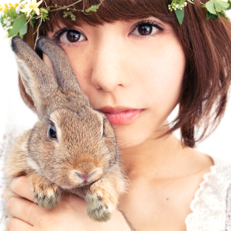 ウサギと豊崎愛生